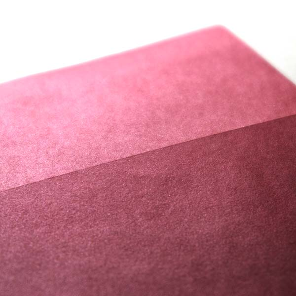 TSUTAFU(ツタウ) 「紙でつた ...